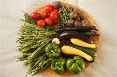 alimentazione vegana dieta vegana i vegani albanesi it