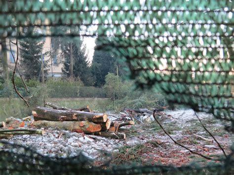 con al parco pi 249 alberi e meno merate l intervento nell ex parco diana avrebbe richiesto