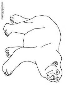 cute pictures printable coloring pictures polar bears results calendar 2015