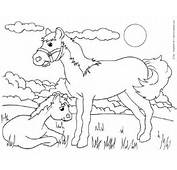 Horse And Filly Or Colt 2 Of  Free Farm Animals Coloring Pages To