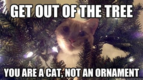 Cat Christmas Tree Meme - christmas tree cat memes quickmeme