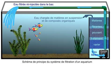 Pompa Co2 Aquarium principale la filtration