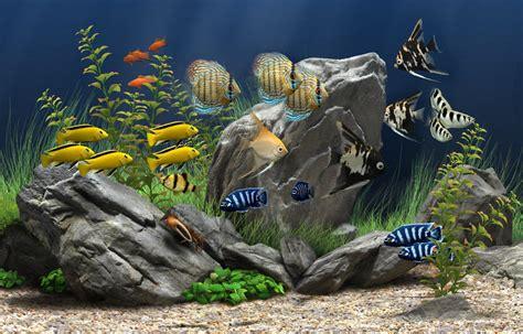 dream aquarium screensaver    software