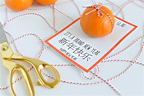 new year oranges lunar new year printable orange you glad hello splendid