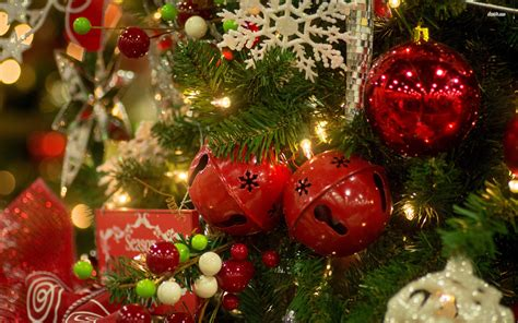 images branch holiday fir decor  year christmas tree christmas decoration