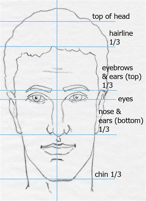 drawing with measurements how to draw step by step faces