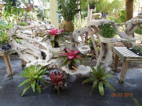 The Top 10 Things To Do Near Disney S Vero Beach Resort Rock City Gardens Vero