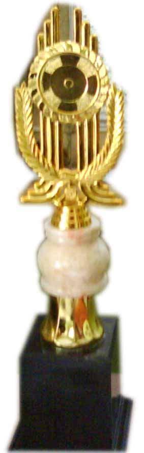 Piala Piala Titam Piala 40cm Piala Sekolah Piala Lomba Trophy 40cm smaintinusantara sma sw inti nusantara tebing tinggi