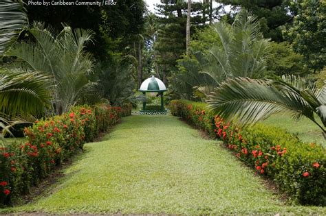 St Vincent Botanical Gardens Interesting Facts About Vincent And The Grenadines Just Facts
