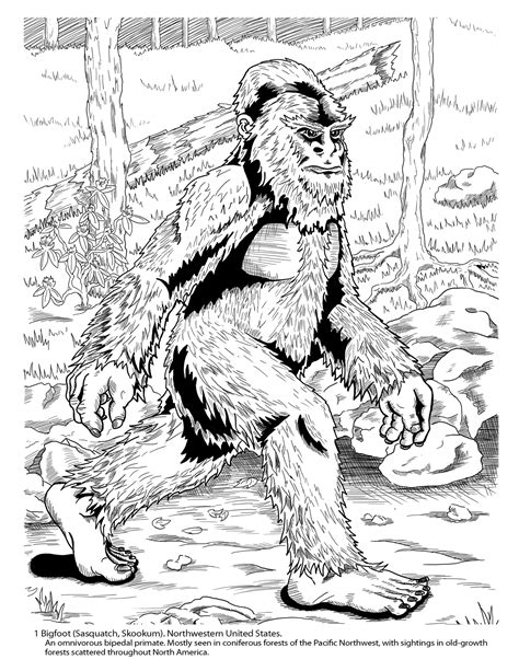 cryptozoology coloring book 183 prints by jake lagory