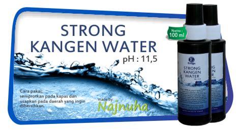 strong kangen water ph 11 5 kangen water
