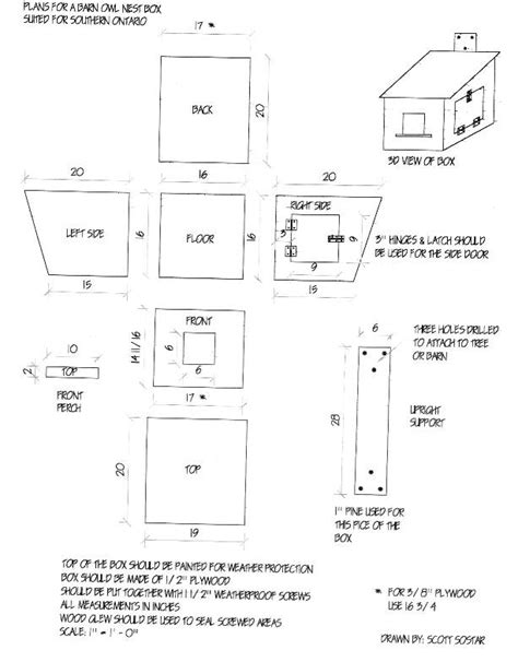 plans on how to build an owl nesting box the hungry owl project barn owl nest box plans birds pinterest nest box