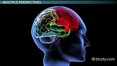 what are the seven contemporary perspectives in psychology comparing psychological perspectives lesson