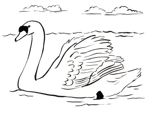 swan coloring pages swan coloring page bell