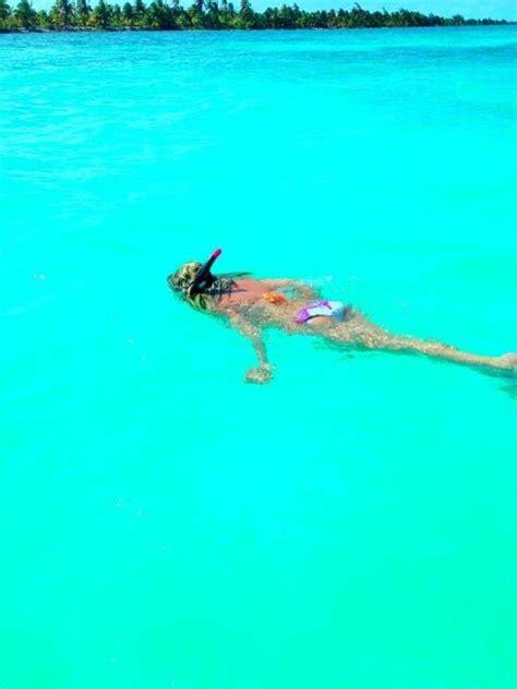 catamaran snorkeling belize snorkeling off caye caulker belize belize pinterest