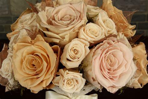 martini chagne rose blush chagne