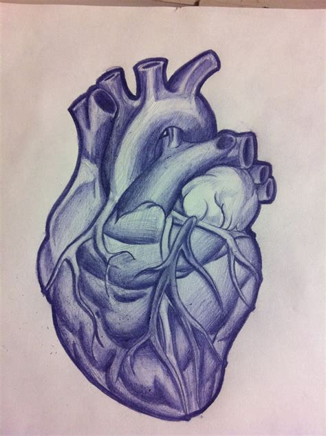 realistic heart tattoo on anatomical anatomical