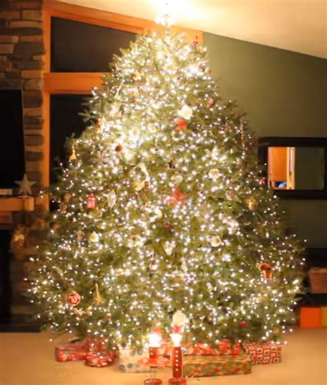 christmas tree lights that play music dad decorates christmas tree with bright lights once