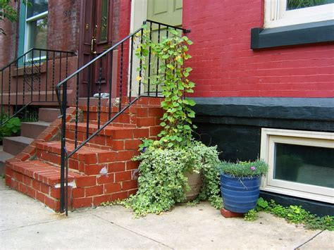 sidewalk planter clinging vine on step railing