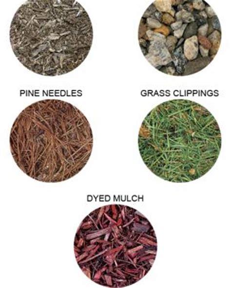 garden mulches types the most of mulch gardening