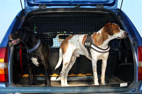 Hundesicherung Im Auto by Autofahren Mit Hunden Ratgeber Und Tipps Von Planet Hund
