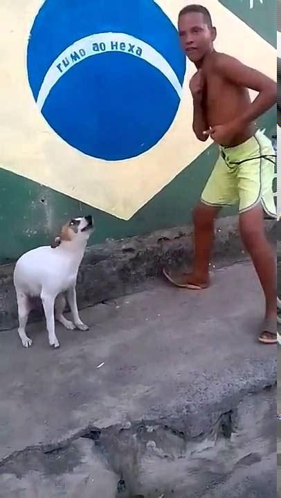 Dancing Dog Meme - brazil dog dance youtube