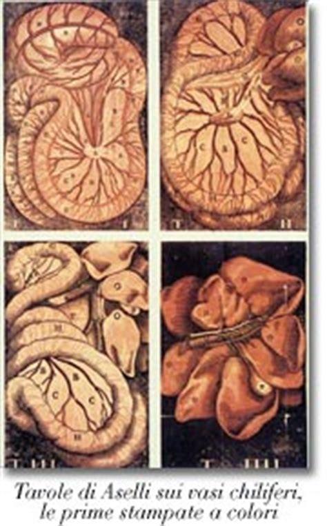 vasi chiliferi appunti dalle lezioni di storia della medicina