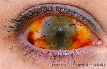 212 best eye contacts images on pinterest | contact lens