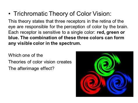 sensation perception basic terminology ppt
