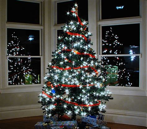 christmas tree in the bay windows flickr photo sharing
