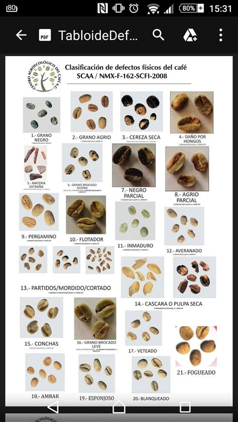 Coffee Roasting 17 best images about coffee on coffee roasting