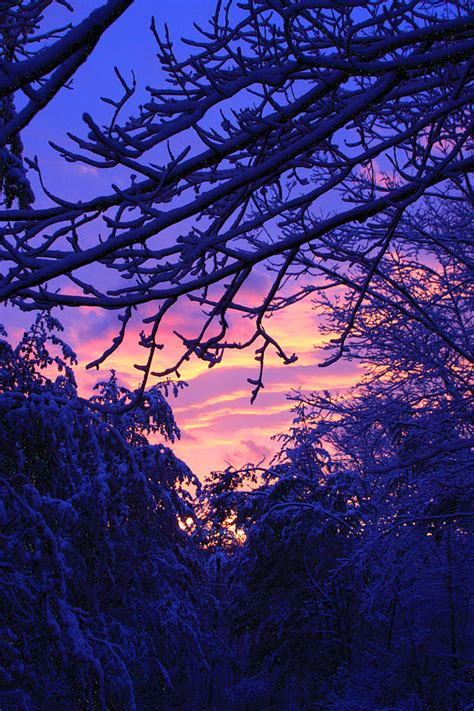 cold colors cold colors photograph by dave belcher