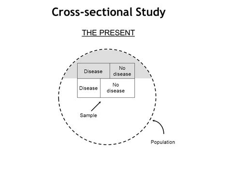 cross sectional studies exles basics of epidemiology ppt download