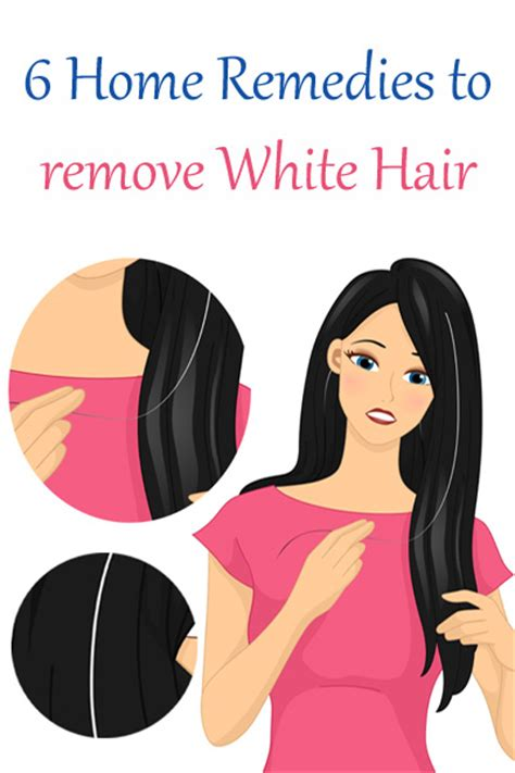 how to reduce dog hair in house how to minimize hair in house 28 images reduce hair loss home hair and hair loss