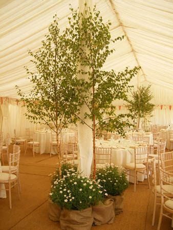Get you own wedding tree to keep forever with our own