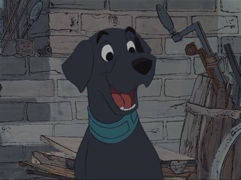 Tha 101 Black labrador disney wiki fandom powered by wikia