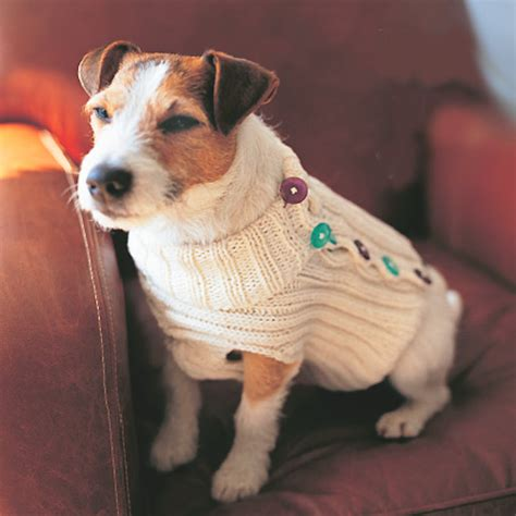 knitting pattern for dog sweater dog sweater knitting pattern a knitting blog