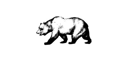 california bear   clip art  clip