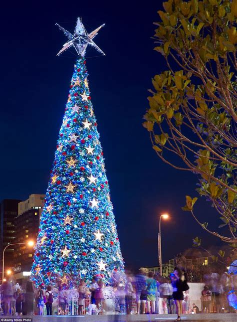 where is the biggest chistmas tree in the whole world mailonline travel reveals the best trees in the world daily mail