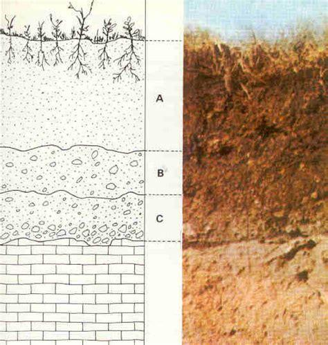 soil wikipedia soil wikipedia