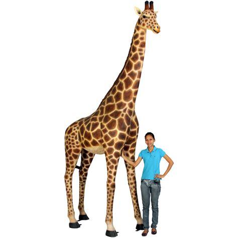 imagenes de jirafas en yeso figura jirafa a tama 241 o real decoraci 211 n tem 193 tica
