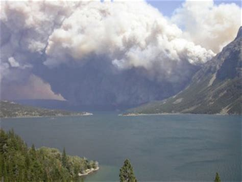 climate engineering fuels raging forest fires across the