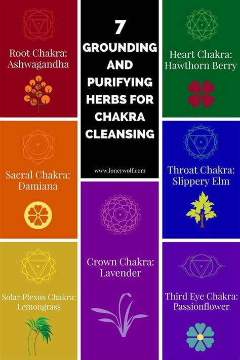 empath a complete guide for developing your gift and finding your sense of self books 7 chakra cleansing herbs for empaths and healers lonerwolf