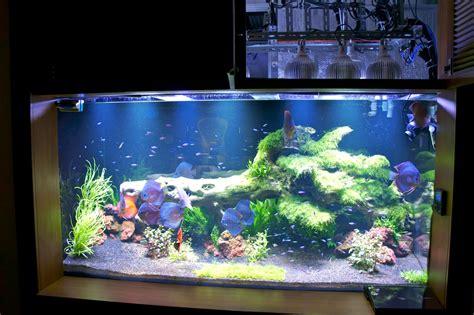 led aquarium lighting orphek orphek pr 72 led