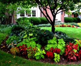 landscaping ideas front yard pics the garden inspirations