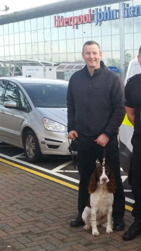 how are dogs trained to detect drugs drugs dogs used by widnes in licensed premises visits liverpool echo