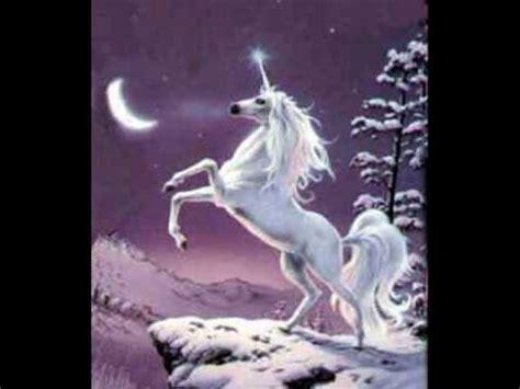 imagenes de animales unicornios del unicornio al caballo alado youtube