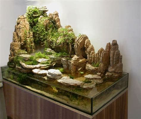 bring the beach into your home with tide pool aquariums