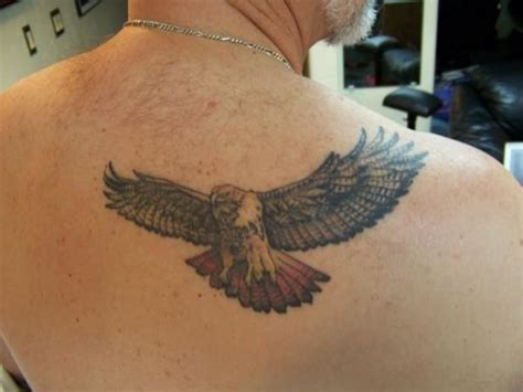 hawk tattoos designs hawk tattoos designs ideas and meaning tattoos for you