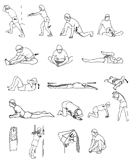 diagram of stretches 171 exercise 171 exercise and mind